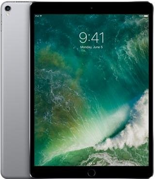 Apple iPad Pro Wi-Fi+Cellular 256GB Space Gray MPHG2FD/A